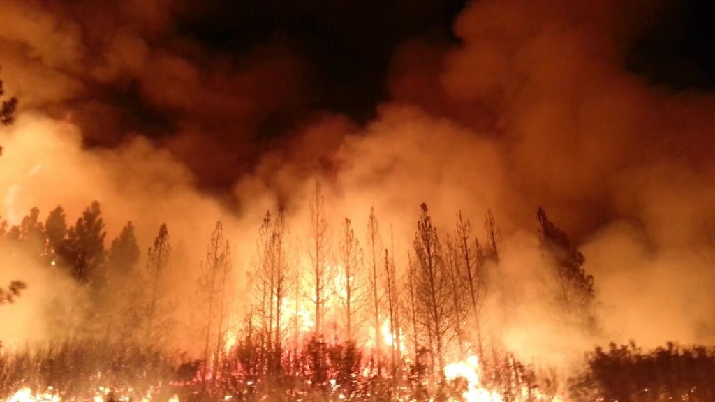 The Rim Fire in the Stanislaus National Forest near in California began on Aug. 17, 2013 and is under investigation. The fire has consumed approximately 149, 780 acres and is 15% contained. U.S. Forest Service photo.
